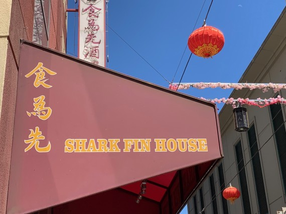 BREAKING NEWS: Shark Fin House is not closing – Patrons mobilise to support local Chinese restaurants